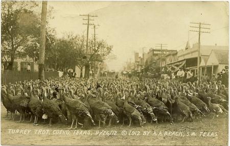 PostcardCueroTXTurkeyTrot1912